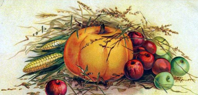 vintage-pumpkin-illustration-public-domain